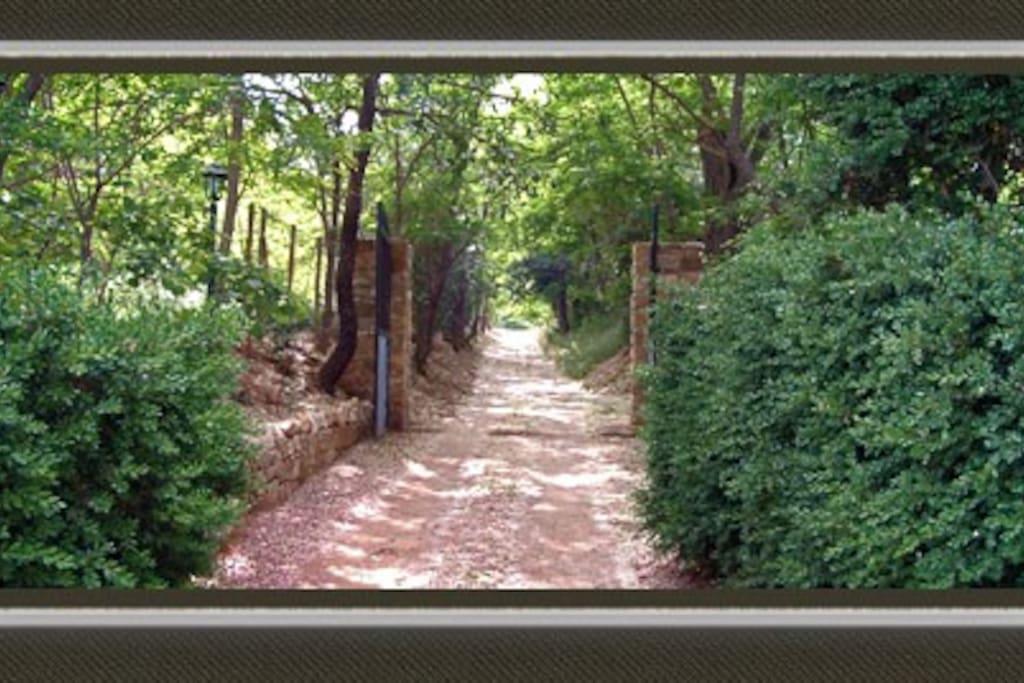 viale d'ingresso alla villa