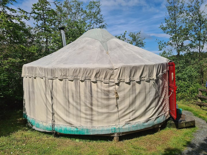 Glamping Yurt at Marthrown of Mabie