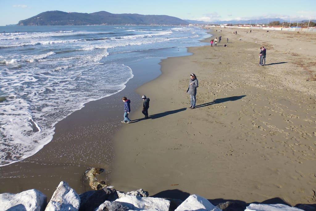 Spiagge di Marina.