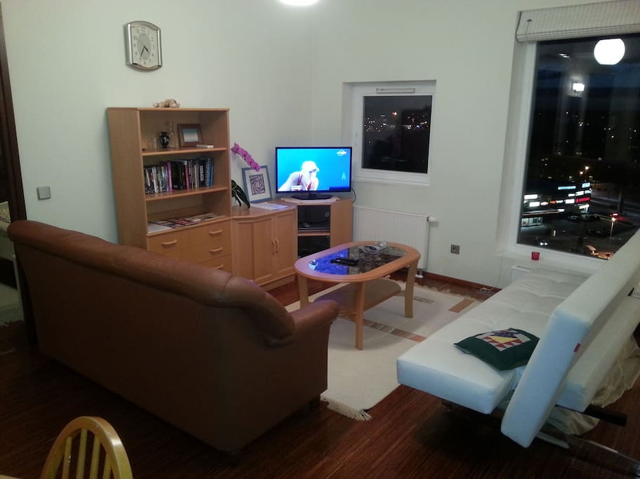 Living room have two sofas, bookshelf, tv and dvd-player