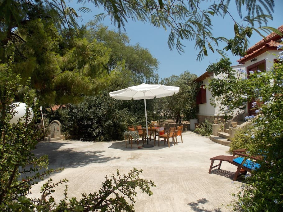 Live in The Oldest Pistachio Estate : courtyard