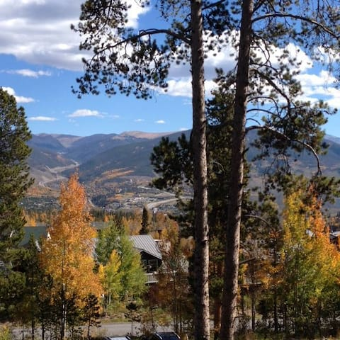 Last Minute Weekday Specials!!! - Silverthorne - Apartment