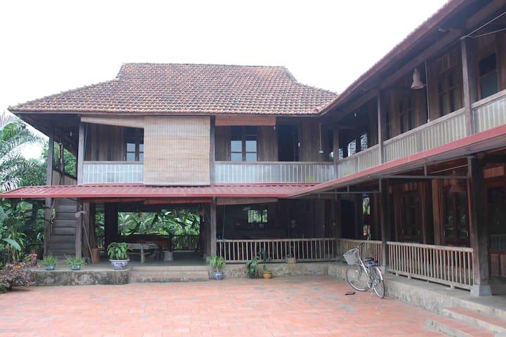 Large stilt House in BaVi  - Ba Vi