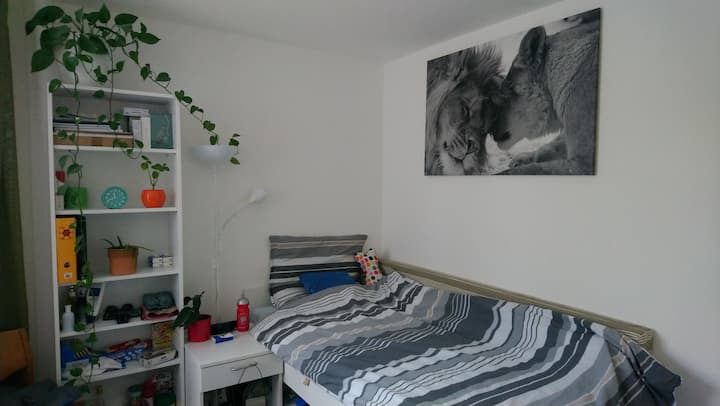 Schöne und saubere Wohnung, tierfrei.
