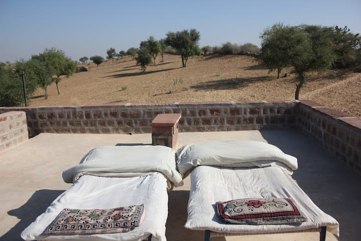 Experience farm life at foots of Thar desert