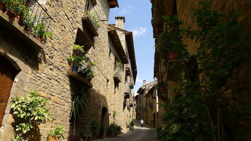 Precioso apto. medieval en Aínsa - Aínsa
