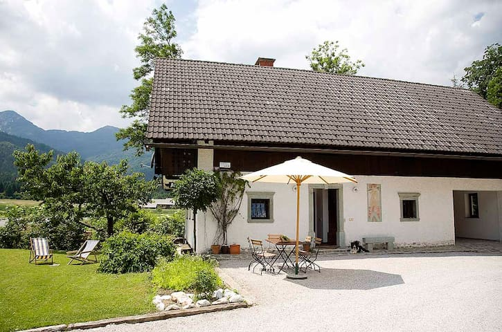 Apartments Pristavec (Base floor) - Bohinjska Bistrica - Apartment