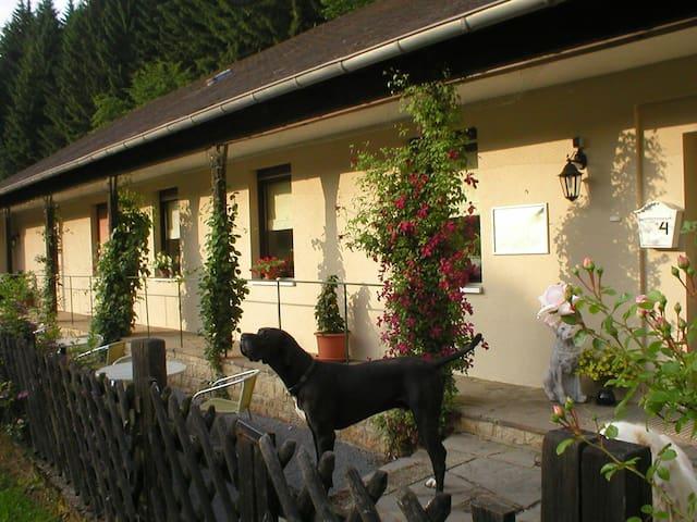Ferien mitten im Naturschutzgebiet - Winterspelt - Apartment