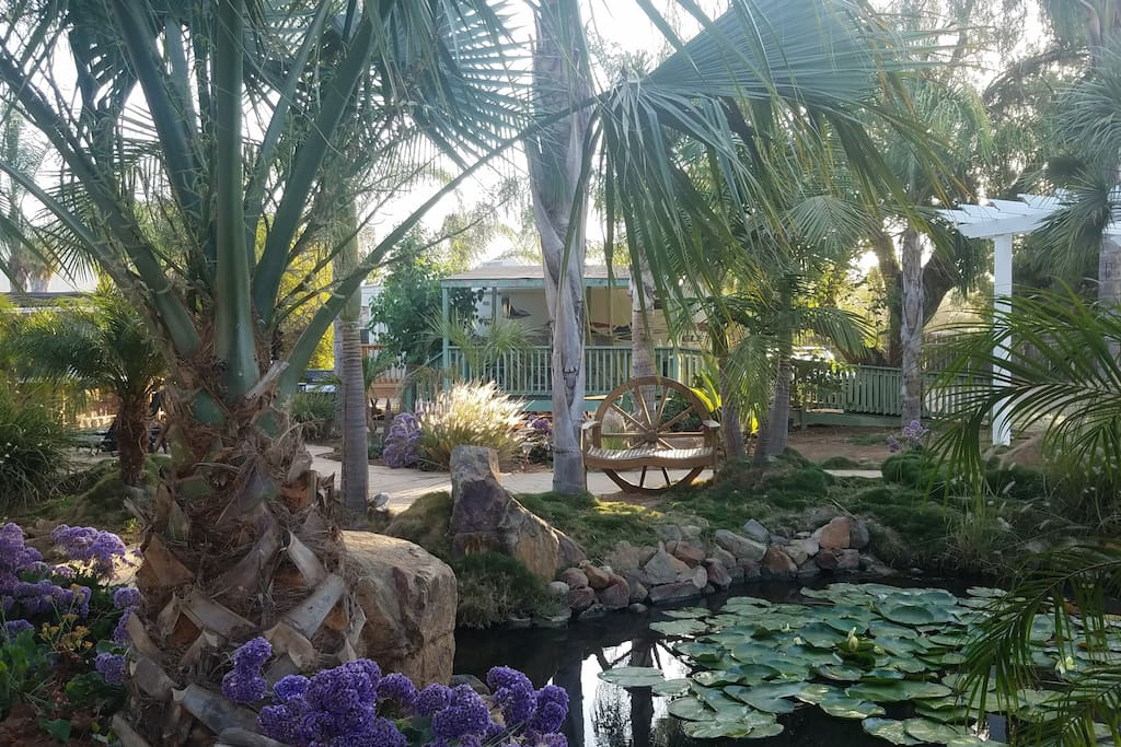 A view of your space from across the Koi Pond