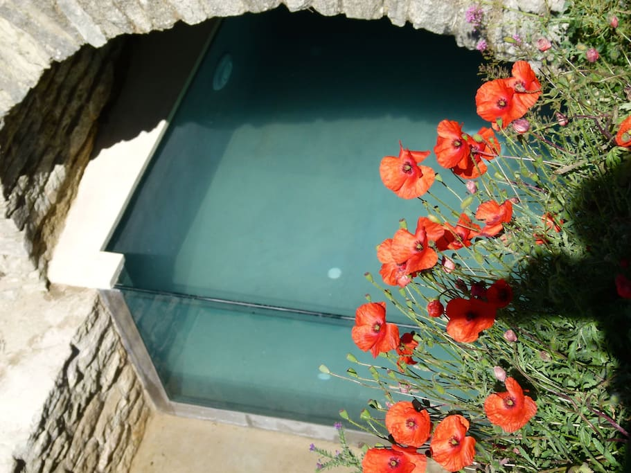 Our beautiful private pool beneath an ancient cave, sun 10 hours a day.