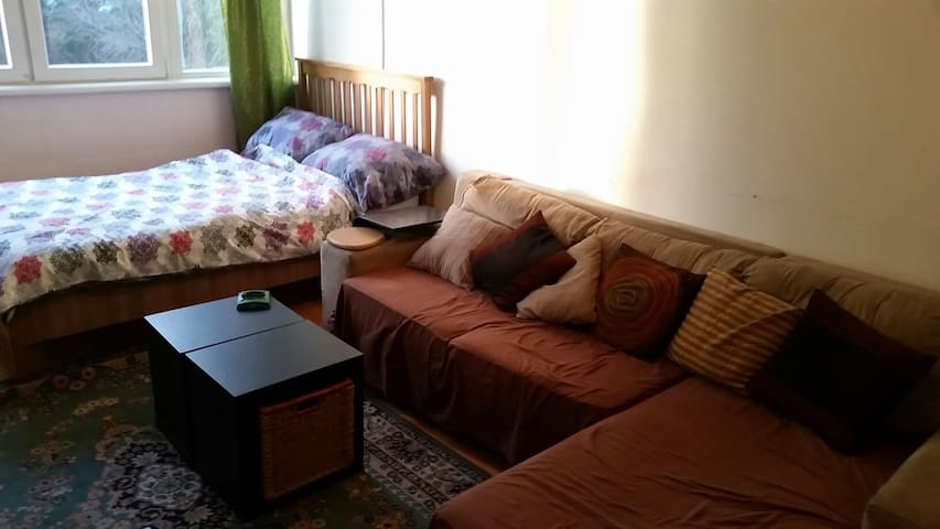 Modern Studio Apartment, Vidikovac - Belgrade - Flat