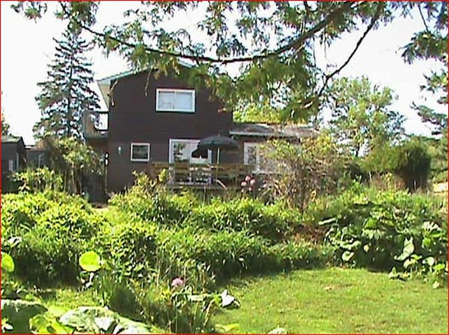 Cozy Lake Front Cottage - Kawartha Lakes - Srub