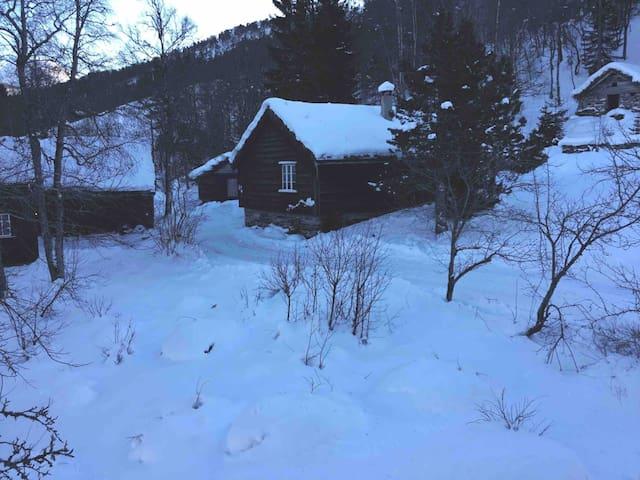 Bjørkelia hytteutleie, 19 senger.