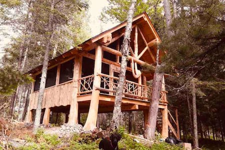 Towering Pine Island; your private get-away