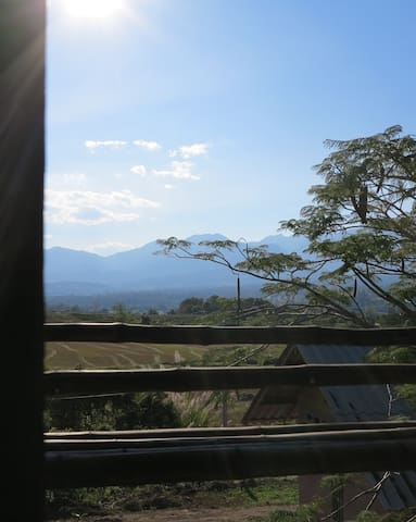 Blackbird cabin bamboo Bungalow - pai - Chalet