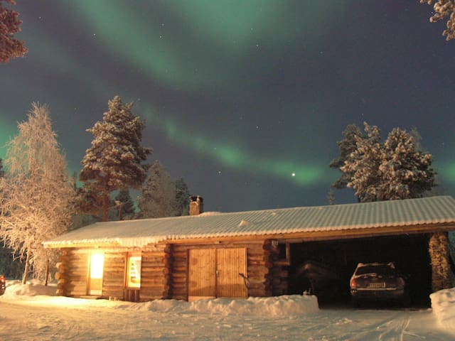 Auroras in the winters evening!