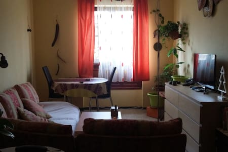 Cossy  single bedroom in the citycenter - San Cristóbal de La Laguna