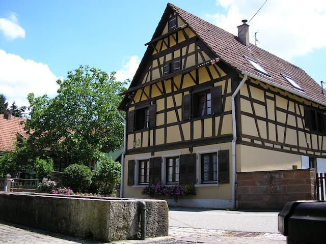 Gîte à La Petite Fontaine - Langensoultzbach - Dům