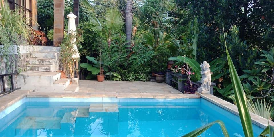 Villa Bukit Lovina 2bedrooms 2 bathrooms+pool