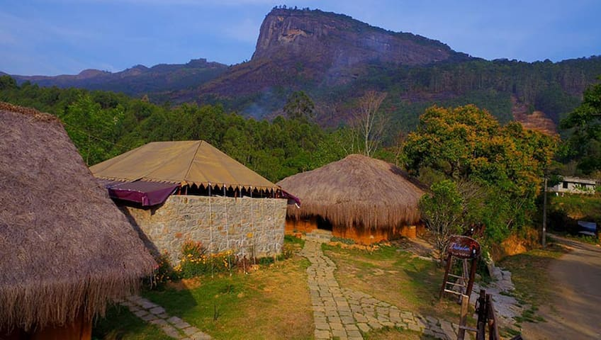 Superior room in an Eco resort near Munnar
