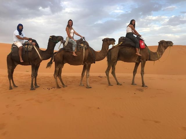 overnight desert camp & sahara camel tours