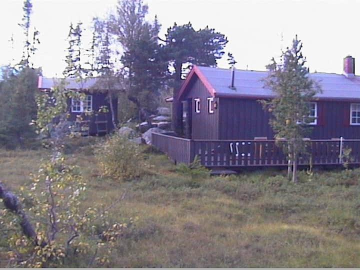 Godt utstyrt hytte / cottage på Norefjell, Eggedal