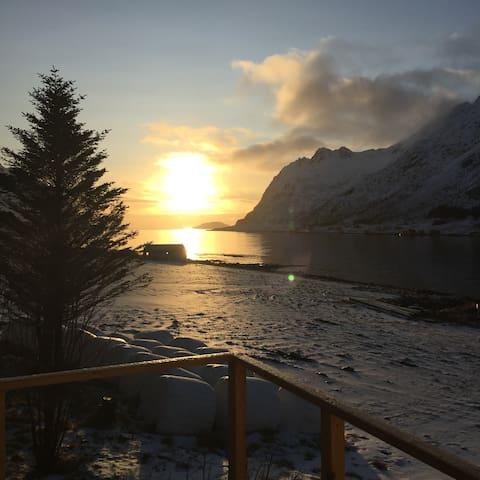 Utsikten ut i skjelfjord