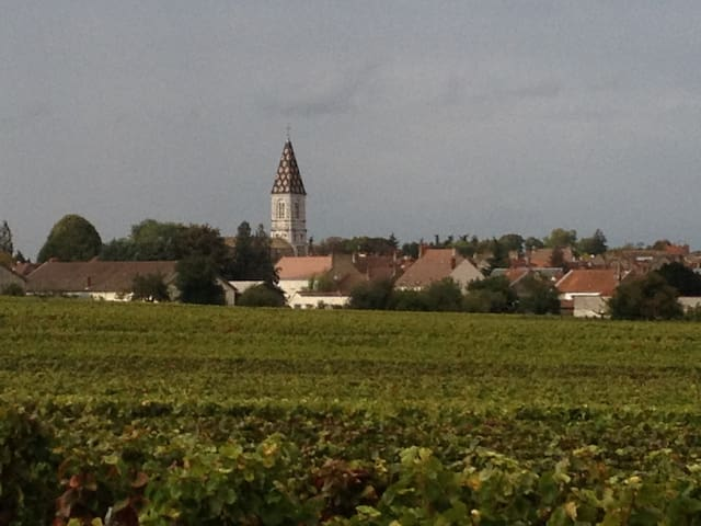 une maison de ville en bourgogne - Nuits-Saint-Georges - Dům