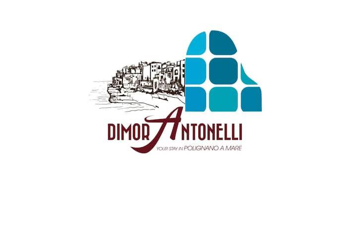 DimorAntonelli