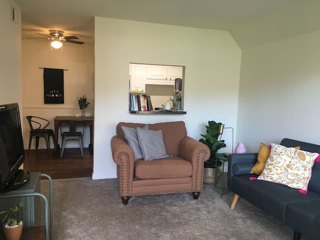 Cozy apartment at the heart of Carrboro