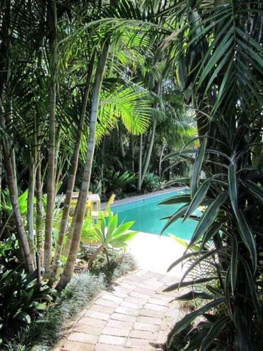 Lush tropical garden (property 700sqm)