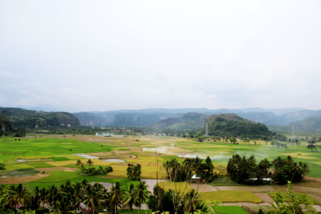 the view at location