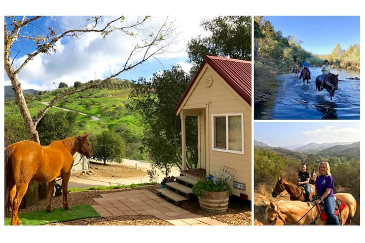 Imagine! A TINY HOUSE w AMAZING TRAIL RIDE Option!