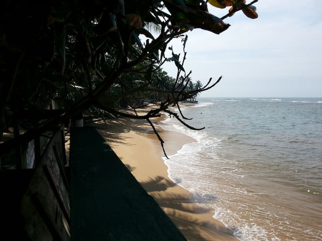 Stay on the Beach overlooking Ocean - Aluthgama - Apartmen