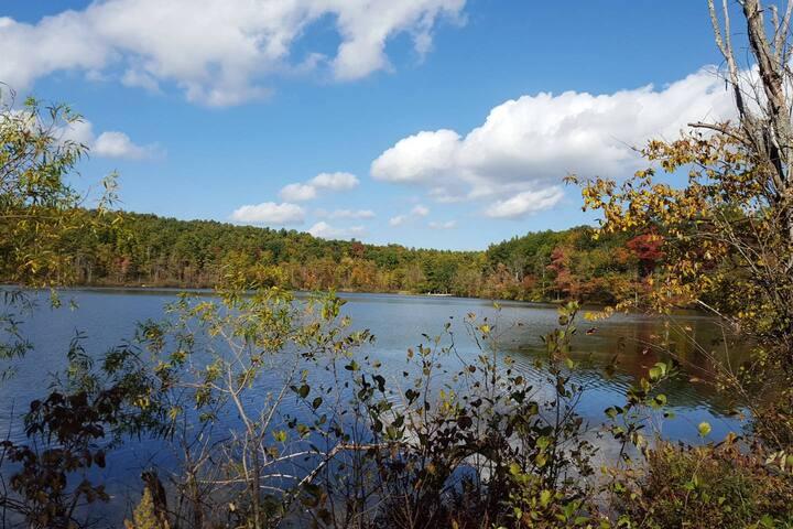 Lake Mansfield is a 7-minute walk away.