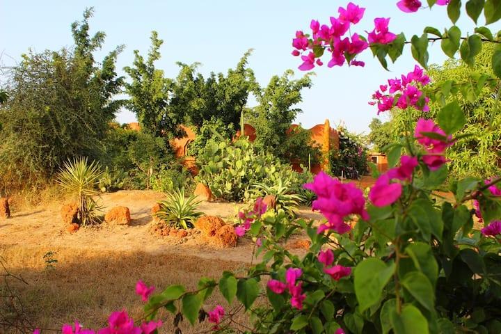 ROOM IN A GREENERY OASIS - Lodge Dalaal Diam