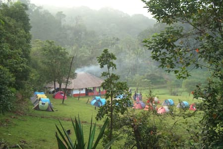 Camp and trek in Coorg