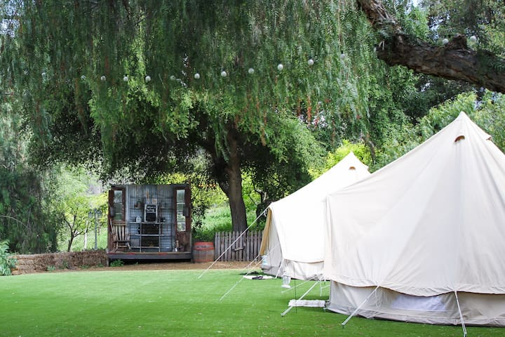 Sweet Lavender Yurt at KCL Farm