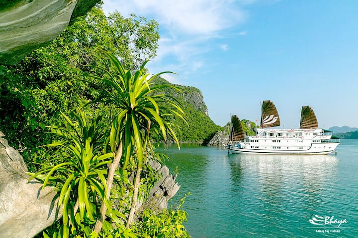 Bhaya Classic 2D1N Halong Cruises  - Ha Long - Vaixell