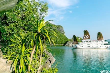 Bhaya Classic 2D1N Halong Cruises  - Ha Long - Boot