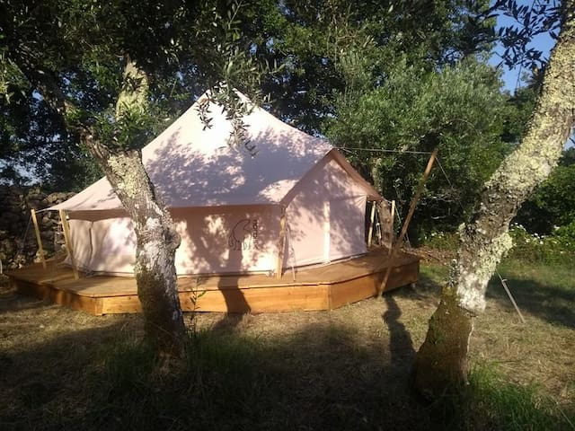 Romantic belltent in olivegrove