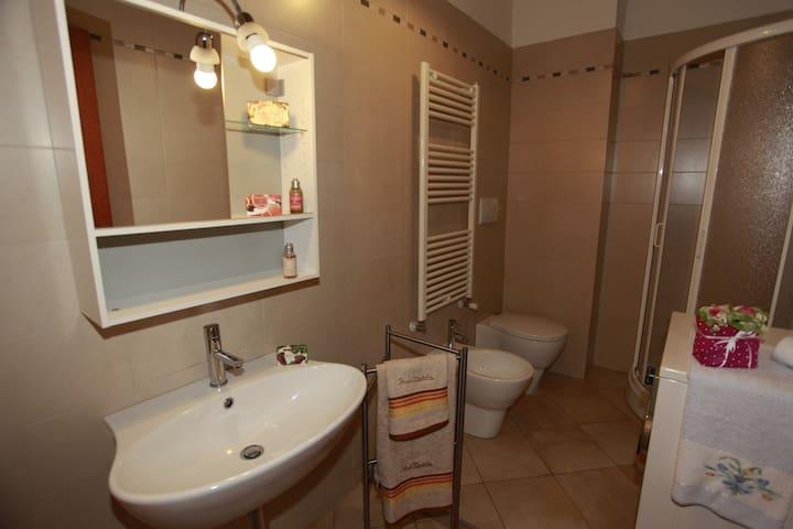 bagno con doccia, servizio di cortesia e lavatrice, biancheria da bagno, asciugacapelli