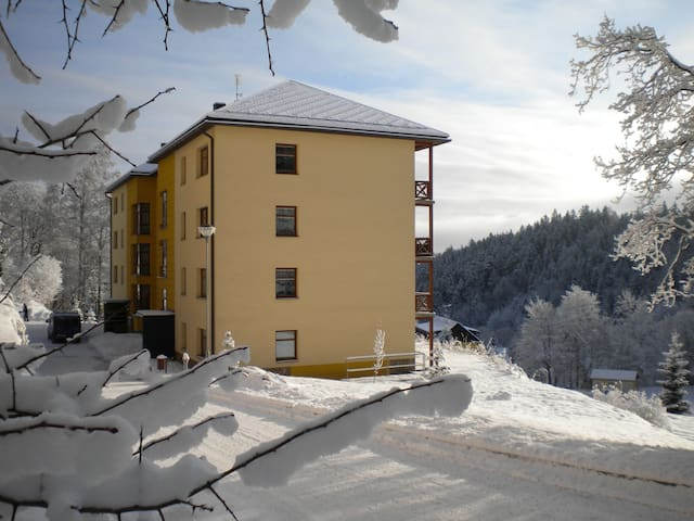 Cozy Studio in a Ski Resort - Janské Lázně - Departamento