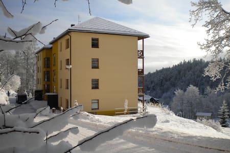 Cozy Studio in a Ski Resort - Janské Lázně
