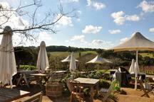 Montalto Winery