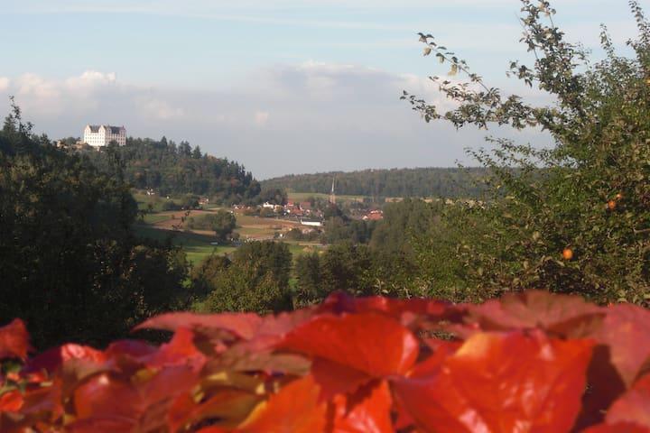 Idyllische Whng mitten in der Natur - Fischbachtal - Lejlighed