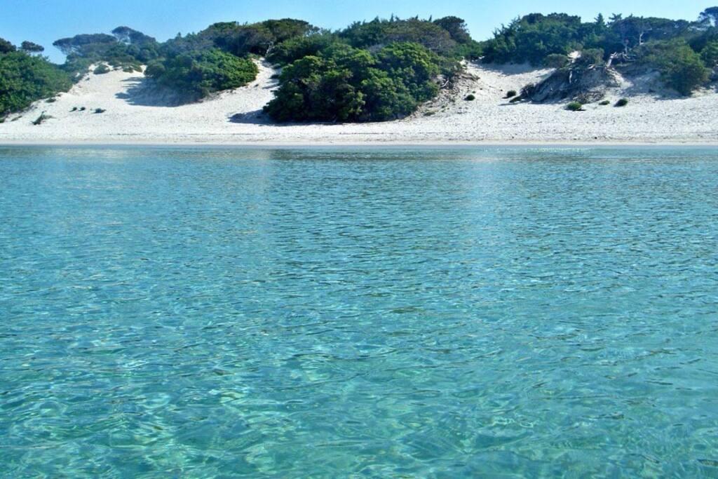 Vacanza da sogno ad alghero appartamenti in affitto a alghero sardegna italia - Bagno davide gatteo mare ...