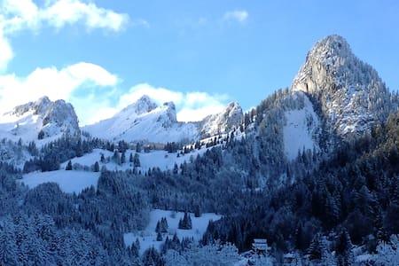 300 from ski lifts Portes du soleil - Apartament