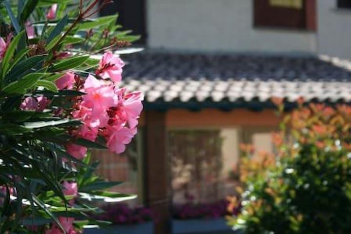 Appartamento in stile rustico - Arezzo - Talo