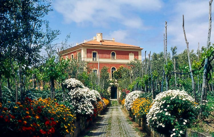 Villa Parisi (XIX  cen.) - Sorrento - Sorrento - Bed & Breakfast